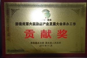 黔南州第六届旅发大会贡献奖